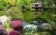 Строительство водоемов, строительство японских садов